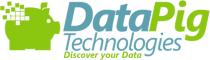 DataPig Xcelsius SAP Crystal Dashboard Design webinar